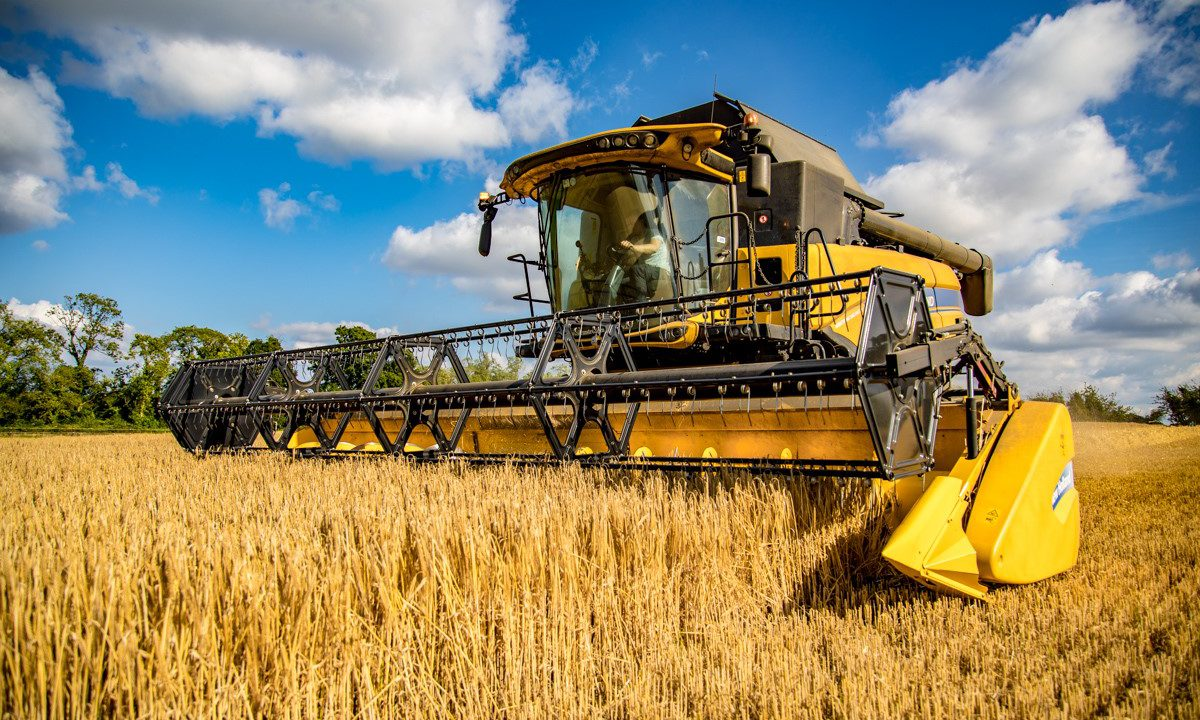 Farmers urged to 'carefully assess' details on straw measure