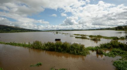 Two-thirds of Donegal grain still to be harvested following flood-woes