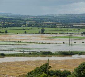 Bad weather halts harvest once again