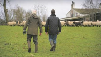 Succession: Do you know who'll take the reins on your farm?