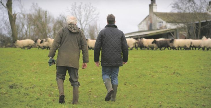 'Failure to address succession can threaten future viability of farms'