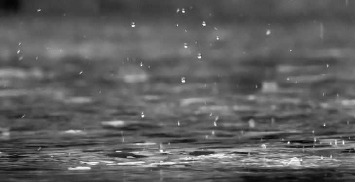 Status Yellow rain warning issued with 50mm of rainfall expected
