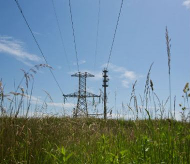 Landowners said to be missing out on electricity line compensation