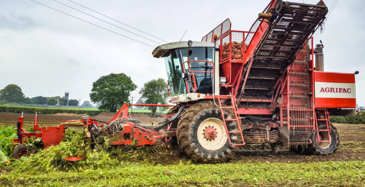 Video: Machinery punters 'beet' a path to working demo
