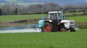 Glyphosate showdown in Europe this week