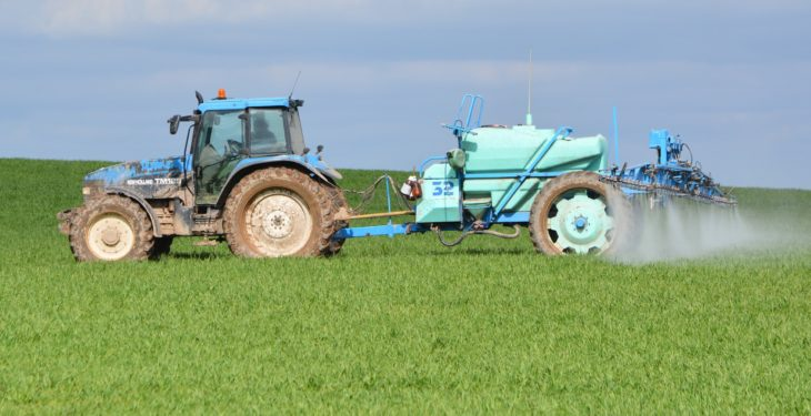 Tillage management: How can you control BYDV and aphids?