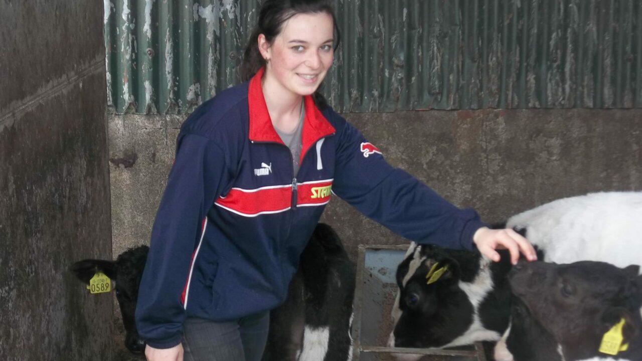 'Progressive' farm families sought for work experience programme