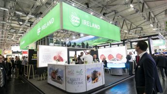 Who will represent Irish produce in SIAL next week?