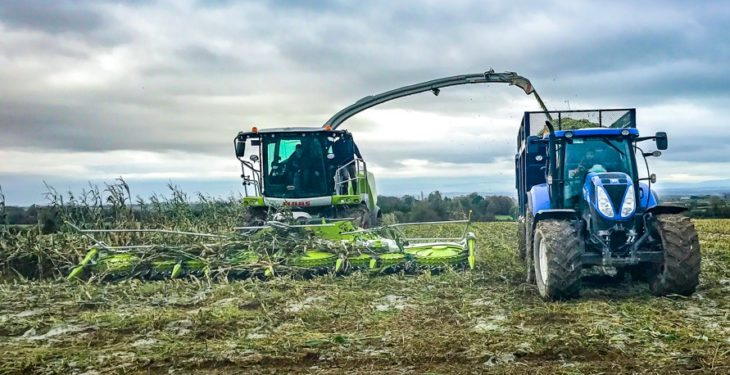 Latest-generation Claas Jaguar hits Ireland – but how does it affect the bottom line?