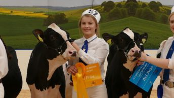 Northern Ireland Holstein breeders manage impressive All-Britain campaign