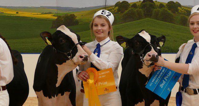 Northern Ireland Holstein breeders manage impressive All-Britain campaign