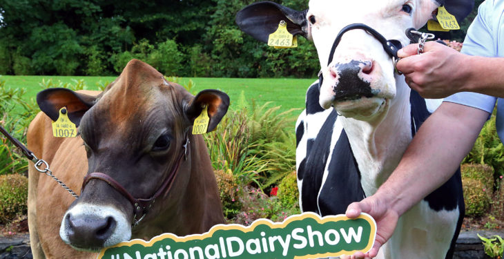 Celeb chef and rugby star 'line-out' for National Dairy Show 2017