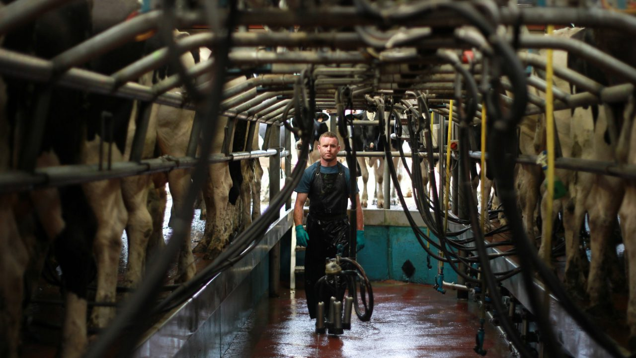 Raising the bar on milk quality in Co. Waterford