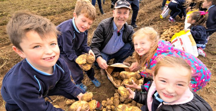 National Potato Day: Consumers urged to choose Irish potatoes