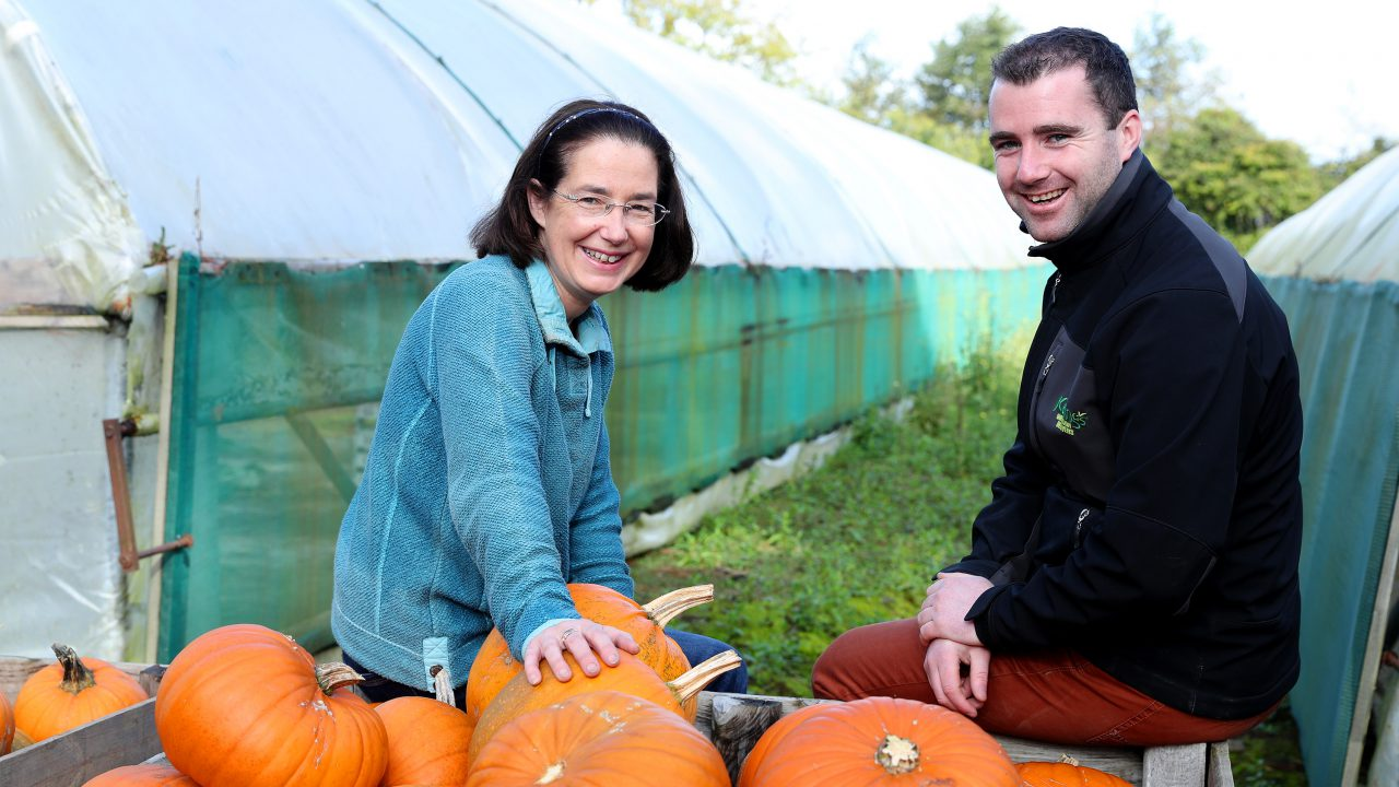 Dublin pumpkin grower carves out a busy lifestyle