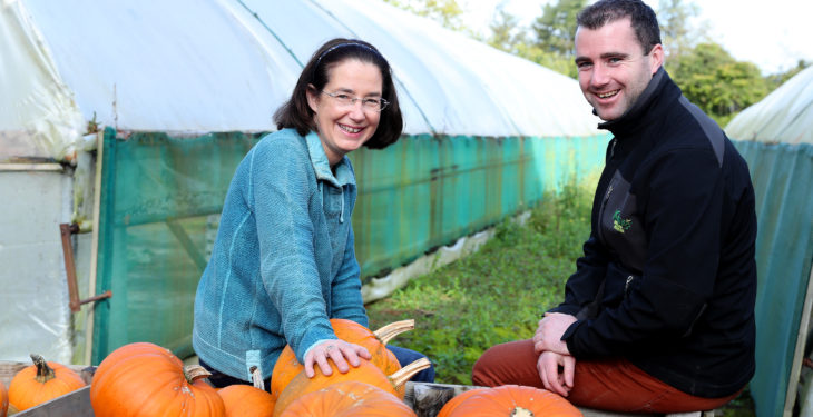 Dublin pumpkin grower carves out a busy lifestyle