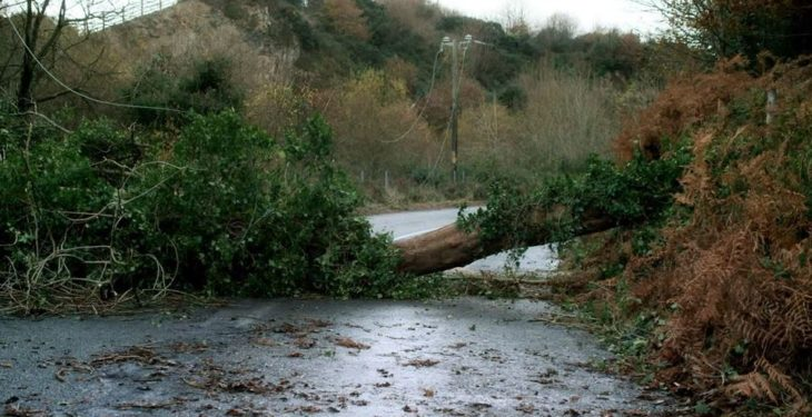 2,000 homes and farms without power after high winds