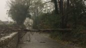 2,400 farms and properties without power following Storm Dennis