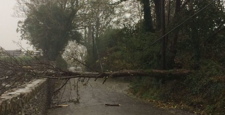 Wind warnings issued for parts of the country