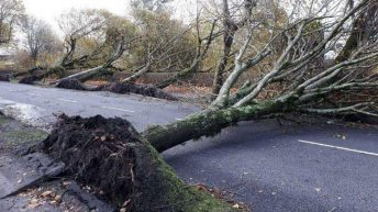 Fresh wind warning issued for 10 counties