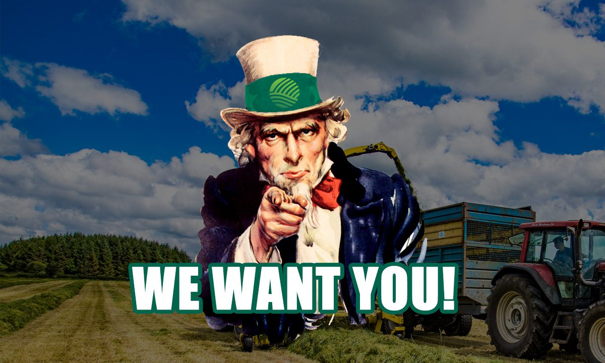 AgriLand wants you – make your work experience stand out from the crowd