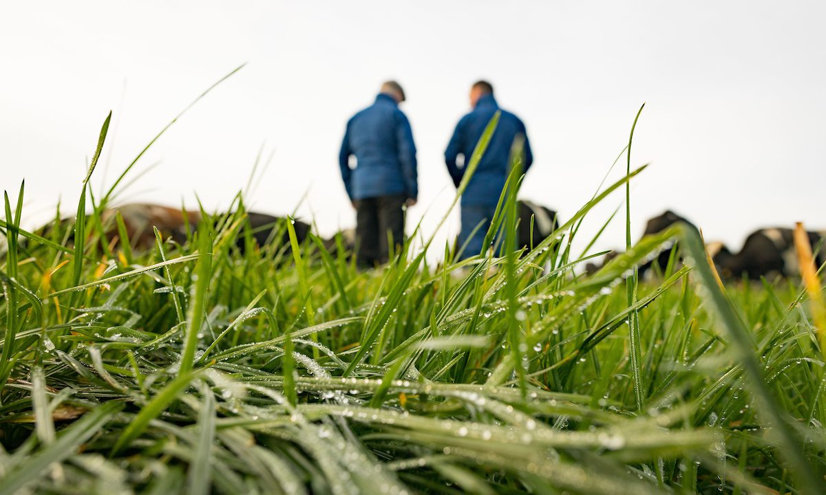 Why sustainability means 'profit' to one Tipperary dairy farmer