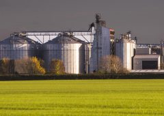 Grain growers express concerns over land use change in Athy