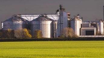 Boortmalt to extend Athy operations by 30,000t