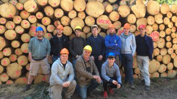 Forestry career: 'Wooden' it be nice…