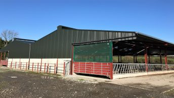 Buildings focus: Facilitating more cows with a 147-cubicle monster