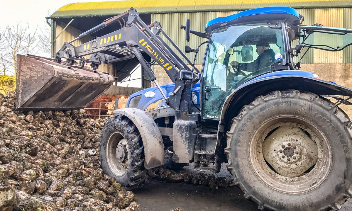 Beet industry set for revival