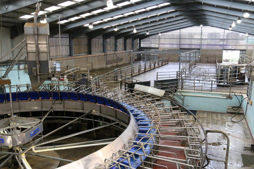 AFBI's high £PLI cows, rotary milking parlour,