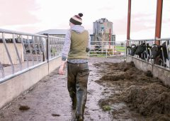 Development of new farm apprenticeships gathers pace