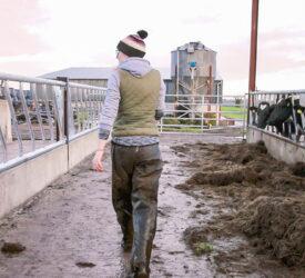 """Macra呼吁在下一次农业政策中对农民进行""""强有力的""""积极定义"""