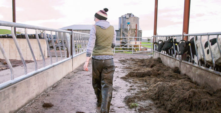 Genuine farmer definition 'not a satisfactory one'