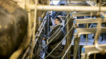 Progressive farmer focus: Breaking down boundaries on a Co. Limerick dairy farm