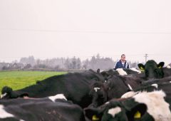 Entitlements and reference years deemed 'barriers to entry' for young farmers