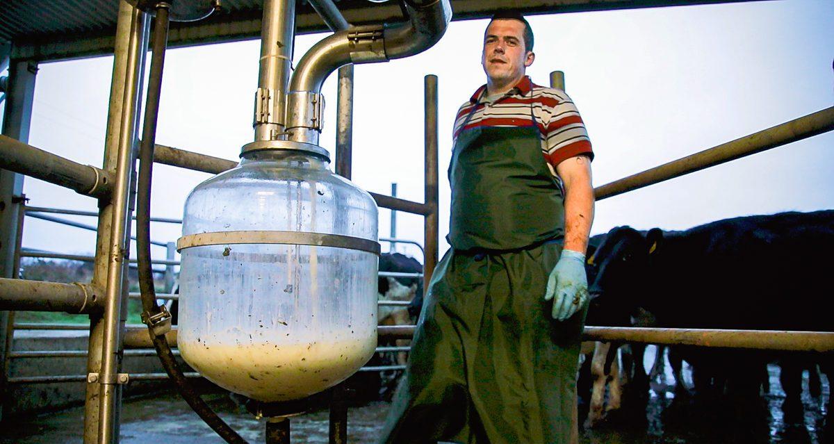 Progressive farmer focus: Share farming the order of the day in Bandon