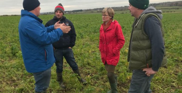 'Conservation agriculture has a role to play in future European farming'