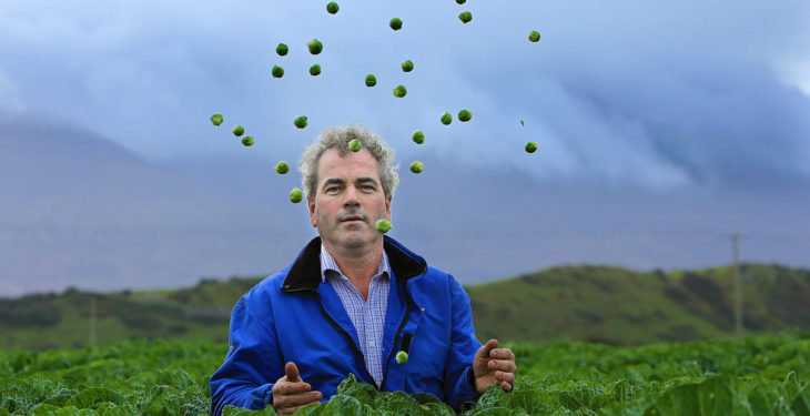 'Cultivating brussels sprouts 18 hours a day won't ruin my Christmas dinner'