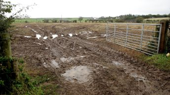 Work continues to be halted on saturated soil