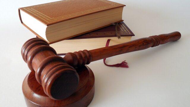 男子因摘掉动物耳签被判有罪并罚款