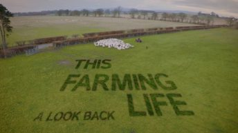 This Farming Life's Bobby Lennox to lead bill at sheep producer event