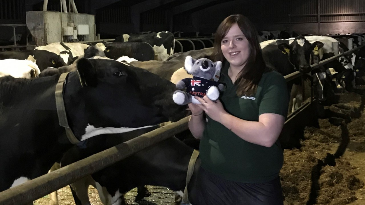 Co. Down dairy farmer wins Holstein Australia scholarship