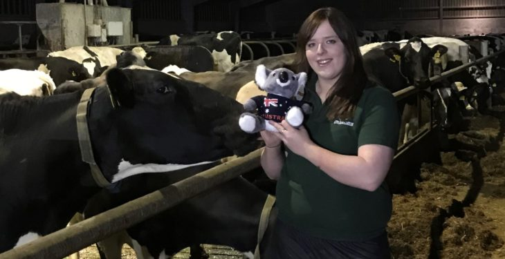 Co. Down dairy farmer wins Holstein Australia scholarship