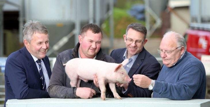 UK pork giant gives backing to Open Farm Weekend