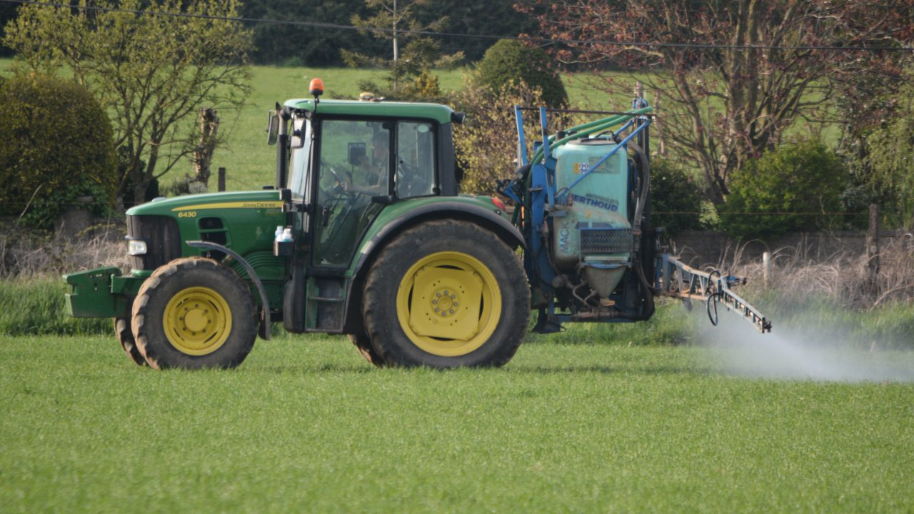 Insecticides under review: What does it mean for winter cereals?