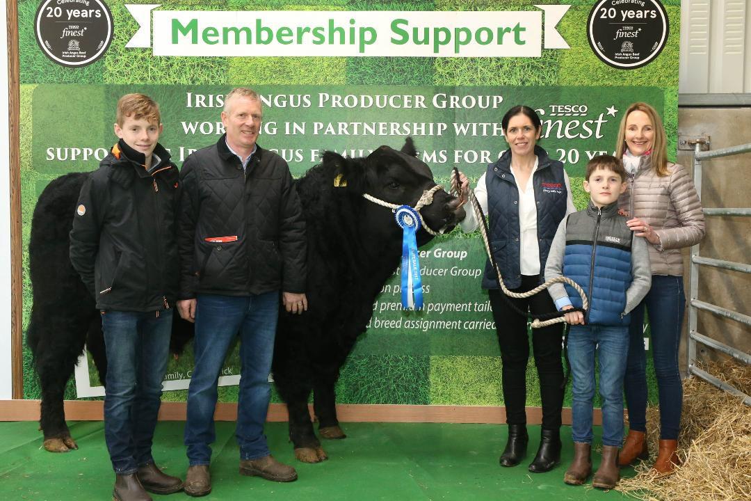 Competition winner secures premium bull at Irish Angus Elite Sale