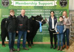 Competition winner secures premium bull at Irish Angus Elite Sale