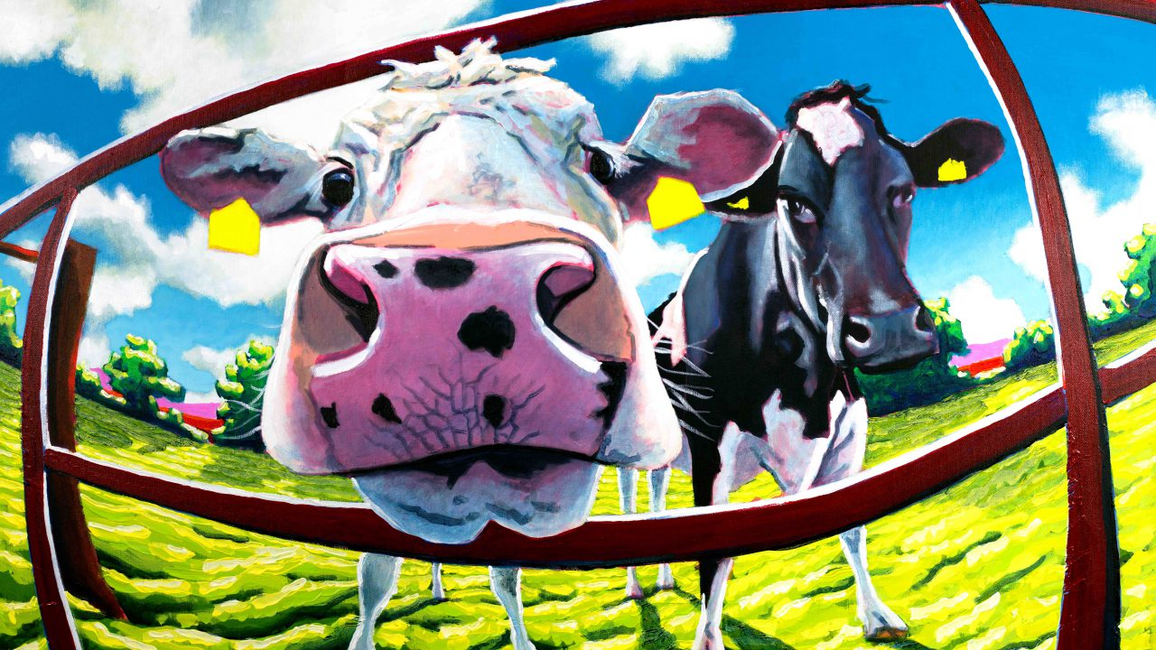 Artist looks to farmer friends for their cows as muses